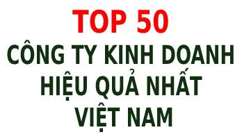 Top 50 công ty kinh doanh hiệu quả nhất Việt Nam - Tập đoàn CEO