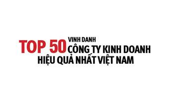 CEO Group lọt Top 50 Công ty kinh doanh hiệu quả nhất Việt Nam - Tập đoàn CEO