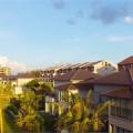 Ra Phú Quốc ngắm cây thông hình ốc biển lớn nhất và độc đáo nhất VN - Tập đoàn CEO